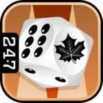 247 backgammon logo